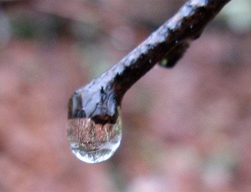 A raindrop at Two-Heel Drive, a hiking blog