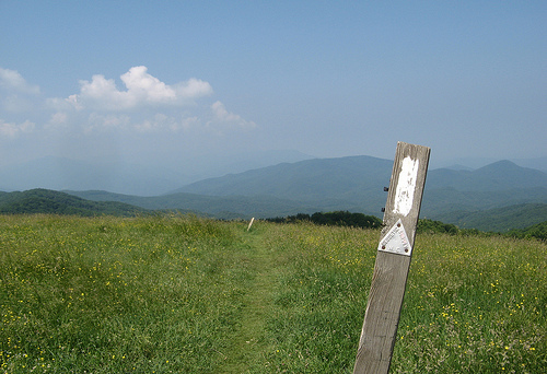 Max Patch and the Appalachain Trail